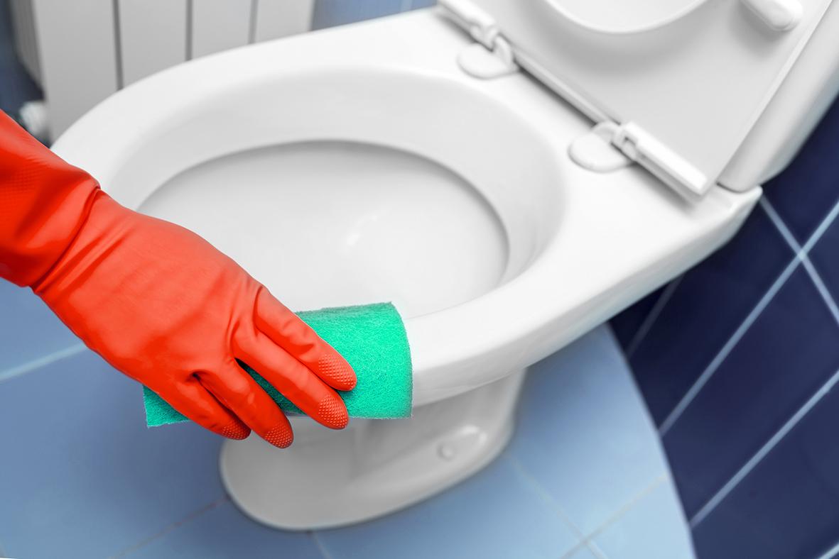 Eine Toilette wird gründlich gereinigt, um Keime im Alltag zu eliminieren.