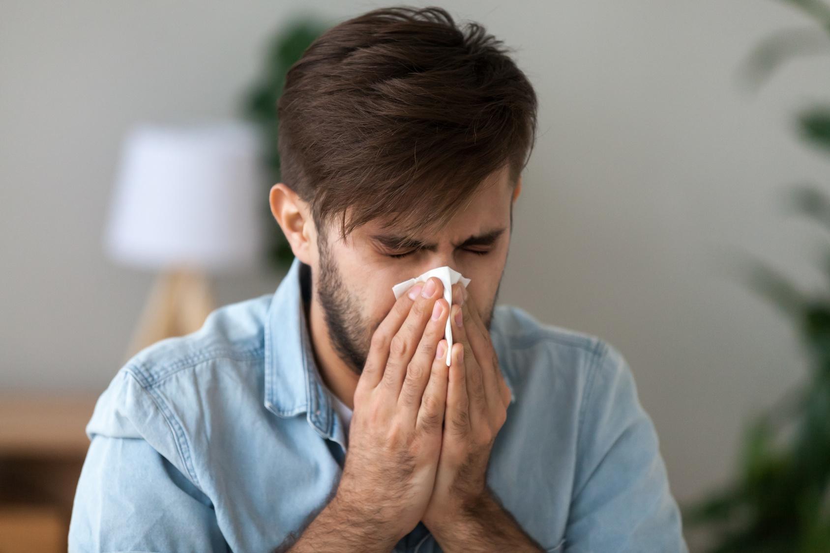 Bei einer Belastung durch HEuschnupfen können Pollenschutzgitter Linderung bedeuten.